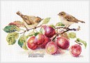 Chiffchaff and plum
